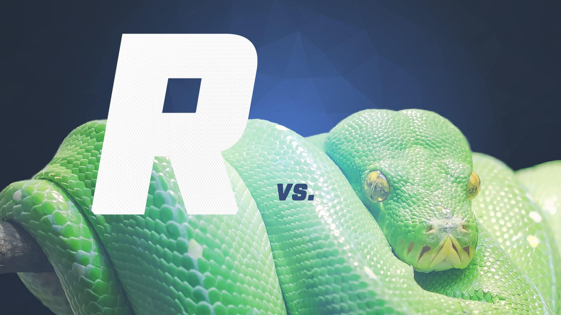 Python vs R: Head to Head Data Analysis – Dataquest
