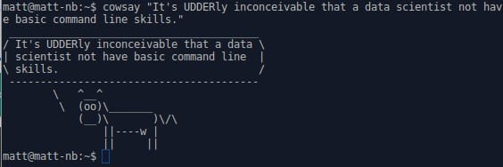 Master the 12 Essential Command Line Tools for Data Scientists