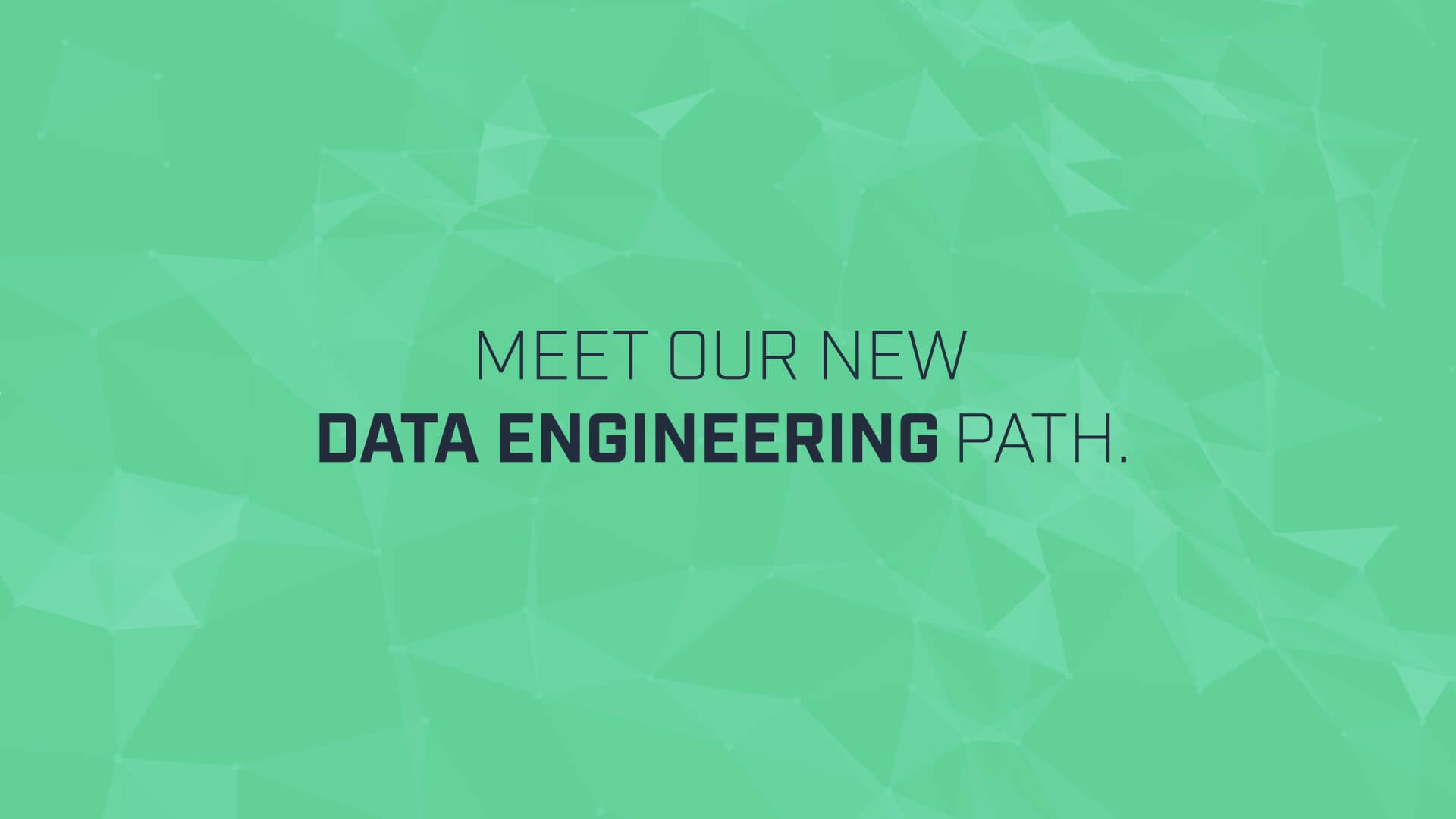 Go From Total Beginner to Data Engineer with Our New Path