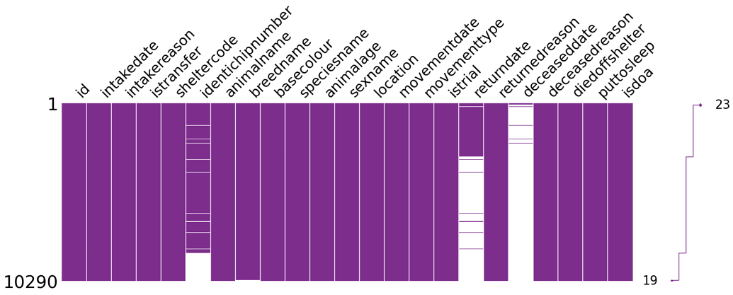 Using Missingno Library to Create a Matrix Chart